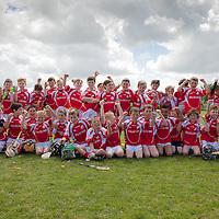EireÓg Academy Under 10 Hurling and Football Team Shot
