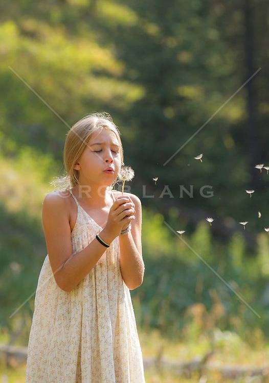 little girl blowing a dandelion outdoors