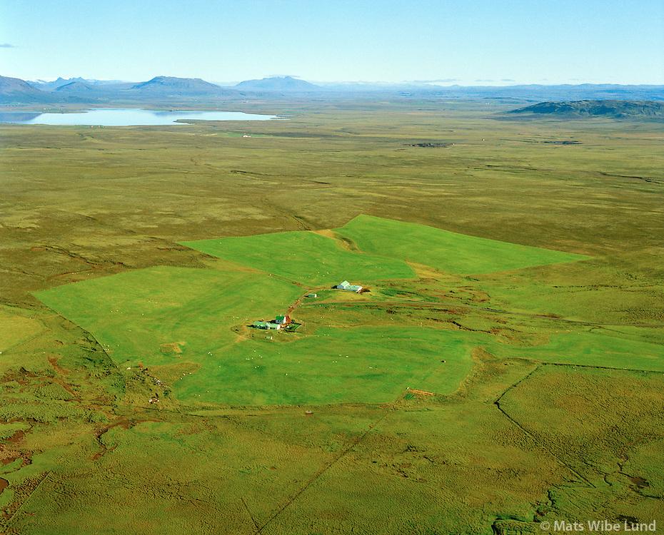 Björk séð til norðurs, Grímsnes- og Grafningshreppur / Bjork viewing north, Grimsnes- og Grafningshreppur. Lake Apavatn in background.
