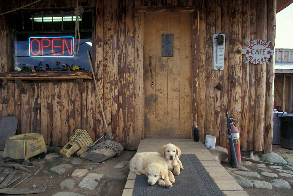 USA, Alaska, Top of World Highway, Dogs nap on porch at Boundary Cafe along USA-Canada Border