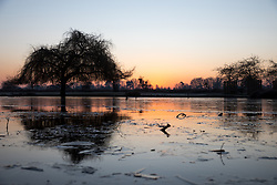 © Licensed to London News Pictures. 12/12/2017. London, UK. Bushy park in south-west London experiences a frost this morning as temperatures in the area dropped to -3 overnight. Large areas of the UK have experienced a cold weather snap with frost and snow over the past 3 days. Photo credit : Tom Nicholson/LNP