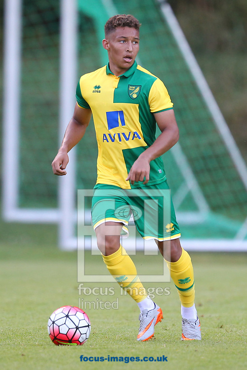 Double goalscorer Louis Ramsey during the pre season friendly match at Leerberg-Arena, Kirchdorf<br /> Picture by Paul Chesterton/Focus Images Ltd +44 7904 640267<br /> 21/07/2015