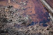 Oil on the ground near a pumpjack in  Louisiana in the Haynsville Shale region.