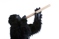 Young man in gorilla costume with rolled paper against white background