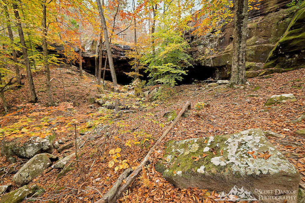 Fall colors at a shelter cave entrance in Newton county Arkansas.