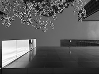 Black-white image of MoMA museum entrance. New York. Perspective view from the ground.