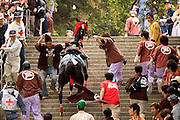 In this festival, horses are raced up a very steep slope and forced over an obstacle. If they make it over, then it is said to be a good omen for the rice harvest later in the year. Conversely, if the horses fail, then it is said that the crops may fail.