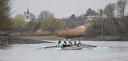 Putney. London,  Great Britain.<br /> CUWBC, Blondie, approaching Chiswick Eyot.<br /> 2016 Tideway Week, Putney. Putney Embankment, Championship Course. River Thames.<br /> <br /> Saturday  26/03/2016 <br /> <br /> [Mandatory Credit; Peter SPURRIER/Intersport-images]