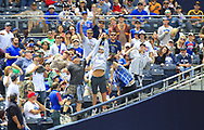 May 29, 2017 - San Diego, CA, USA - Fans try to catch a foul ball during a San Diego Padres game against the Chicago Cubs on Monday, May 29, 2017 at Petco Park in San Diego, Calif. (Credit Image: © K.C. Alfred/TNS via ZUMA Wire)