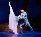 Le Corsaire 8th January 2014