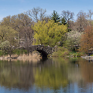 The Pond and Gapstow Bridge in Central Park