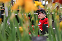 © Licensed to London News Pictures. 20/05/2019. London, UK. A female Chelsea Pensioner views a floral display during RHS Chelsea Flower Show. <br /> The Royal Horticultural Society Chelsea Flower Show is an annual garden show held over five days in the grounds of the Royal Hospital Chelsea in West London. The show is open to the public from 21 May until 25 May 2019. Photo credit: Dinendra Haria/LNP