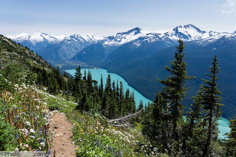 From the High Note Trail on Whistler Mountain, admire turquoise Cheakamus Lake and glacier-clad peaks in Garibaldi Provincial Park, in the Coast Range, British Columbia, Canada. The beautiful lake is colored by glacial silt reflecting reflecting green and blue sunlight.