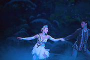 Swan Lake On Ice, featuring Andrey Penkin & Olga Sharutenko, Sydney Australia-26 Aug 2010.Paul Lovelace Photography . An instant sale option is available where a price can be agreed on image useage size. Please contact me if this option is preferred.