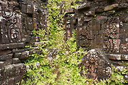 A close-up of moss growing on carved reliefs on a temple in group D of the Cham Temple ruins at the My Son Sanctuary, Quang Nam Province, Vietnam, Southeast Asia