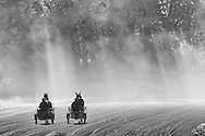 Mount Hope, New York - Harness racing horseswork out  at the Mount Hope Training Center track on a foggy fall morning on Oct. 15, 2016.