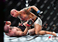 "Nov 12, 2016 - New York, New York, U.S. - Jim Miller (red gloves) vs. Thiago ""Pitbull"" Alves (blue gloves) during UFC 205 at Madison Square Garden. (Credit Image: © Jason Silva via ZUMA Wire)"