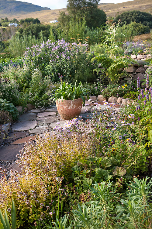 Paved area with herbs and planted container<br /> <br /> 2 Durnamuck, Little Loch Broom, Wester Ross, Scotland