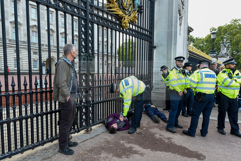 © Licensed to London News Pictures. 15/10/2019. LONDON, UK. Police in attendance as a climate activist from Extinction Rebellion lies handcuffed, prior to being arrested, outside the gates to Buckingham Palace during a Grandparents protest.  Activists are calling on the government to take immediate action against the negative effects of climate change.  Photo credit: Stephen Chung/LNP