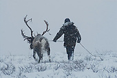 Nomads. Kamchatka, Russia