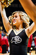 November 24th, 2013:  A Colorado Cheerleader during pre-game action before tip off of the NCAA Basketball game between the Harvard Crimson and the University of Colorado Buffaloes at the Coors Events Center in Boulder, Colorado