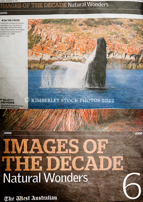 """Tearsheet - """"Images of the Decade - Natural Wonders"""" liftout in The West Australian, December 2009."""