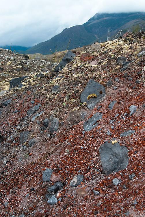 The Hummocks,  Mt. St. Helens National Volcanic Monument, Washington, US