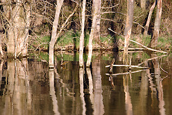09 April 2005<br />