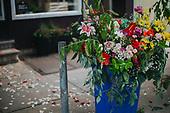Dear Botanica   South Philadelphia   M Concept Shop   Contigo Photography