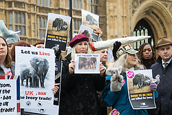 Old Palace Yard, Westminster, February 6th 2017. A protest is held outside the Houses of Parliament in London calling for a ban on the ivory trade ahead of a 4pm Parliamentary debate on the issue.
