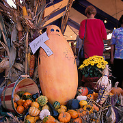 Missouri, Kansas City; Rows Of Pumpkins At Entrance To Farmers Market
