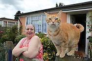 Christine Gregory in front of her prefab in 2012: I have never been inside such a packed prefab. There is stuff about everywhere: walls covered with posters, photos, videos, dvds, armchairs, sofas, shelves and funny furniture for cats! Christine has got 13 of them! Not surprising she is nicknamed 'the cat lady of Catford'! Whatever happens, Christine is determined to stay in her prefab: 'They are all right. You just have to do them up a bit from time to time. They are lovely'.