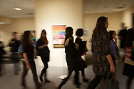 Pre-conference remarks and reception at the Museum of Modern Art..The National Art Education Association (NAEA) National Convention in New York City 2/27/2012 - 3/1/2012