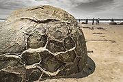 Moeraki boulders and tourists, Moeraki, Otago, South Island, New Zealand