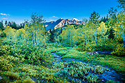 A stream meanders through a tranquil valley on the Alpine Loop in Utah