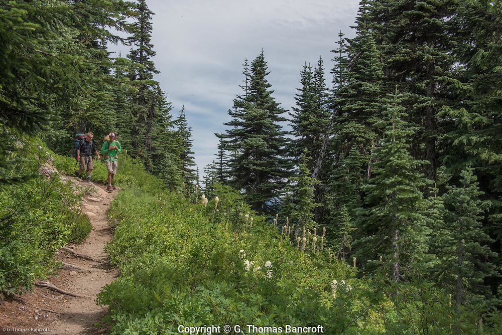 Hikers on Naches Peak Loop Trail in Mt Rainier National Park.