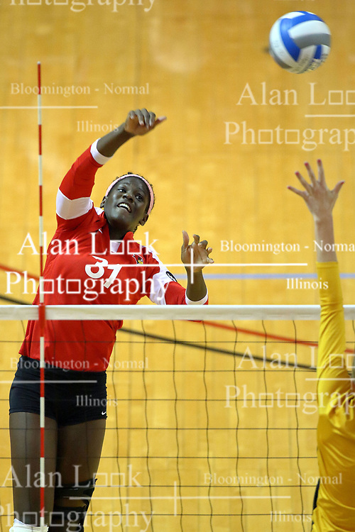 23 October 2010:  Hailey Kelley powers the ball to the shockers from the far right side during an NCAA, Missouri Valley Conference volleyball match between the Wichita State Shockers and the Illinois State Redbirds at Redbird Arena in Normal Illinois.