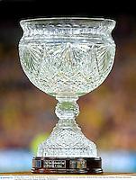 22 June 2013; A view of The Tom Richards Cup. British & Irish Lions Tour 2013, 1st Test, Australia v British & Irish Lions, Suncorp Stadium, Brisbane, Queensland, Australia. Picture credit: Stephen McCarthy / SPORTSFILE