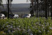 Brasilia_DF, Brasil.<br /> <br /> BR 020 em Brasilia, Distrito Federal.<br /> <br /> The highway BR 020 in Brasilia, Distrito Federal.<br /> <br /> Foto: MARCUS DESIMONI / NITRO