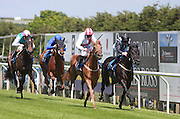 Jockey Luke Morris rides Zamani to victory in the 2.20 race at Brighton Racecourse, Brighton & Hove, United Kingdom on 10 June 2015. Photo by Bennett Dean.