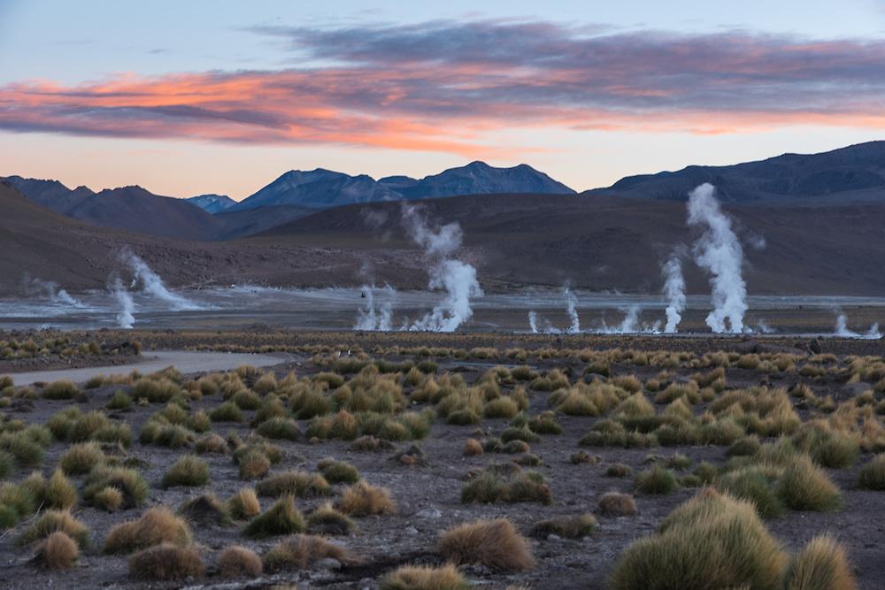 The geysers of El Tatio at sunrise, El Tatio geyser field, Chile.