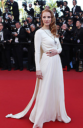 59675530  .Actress Jessica Chastain arrives for the screening of the American film Behind the Candelabra presented in Competition at the 66th edition of the Cannes Film Festival in Cannes, southern France, May 21, 2013. Photo by: imago / i-Images. UK ONLY