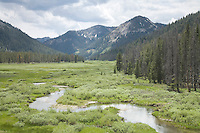 Headwaters of the Salmon River, Idaho.