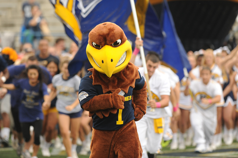 """Flash"" the mascot of Kent State University, leads the team onto the field during Homecoming 2013 festivities."