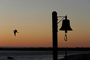 Nantucket, MA 043011  (description: seagull and bell) Seas-side beach treasures at Brant Point Beach photographed at sunrise in Nantucket, MA  during the last weekend of April 2011. (photo by Essdras M Suarez/ EMS Photography)