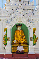 YANGON, MYANMAR - DECEMBER 16, 2016 : man praying at Shwedagon Pagoda Yangon (Rangoon) in Myanmar (Burma)