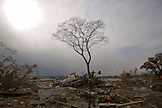 Members of Japan's Ground Self Defence Forces search through the remains of a home that has been battered into a tree in Tona, Miyagi Prefecture, Japan on 23 March 2011.