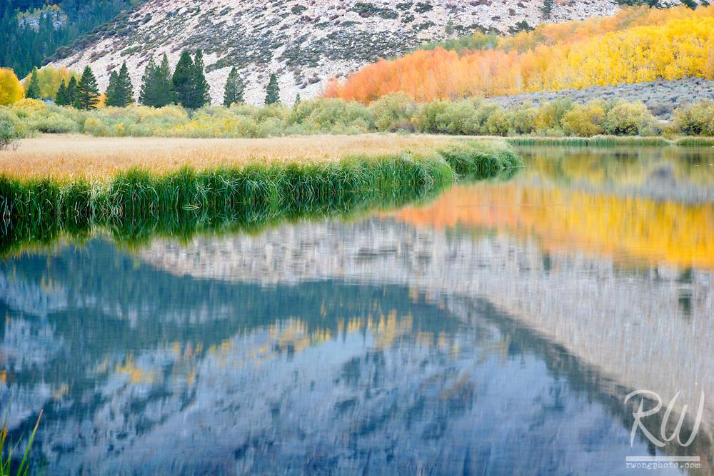 North Lake Shoreline, Eastern Sierra, California