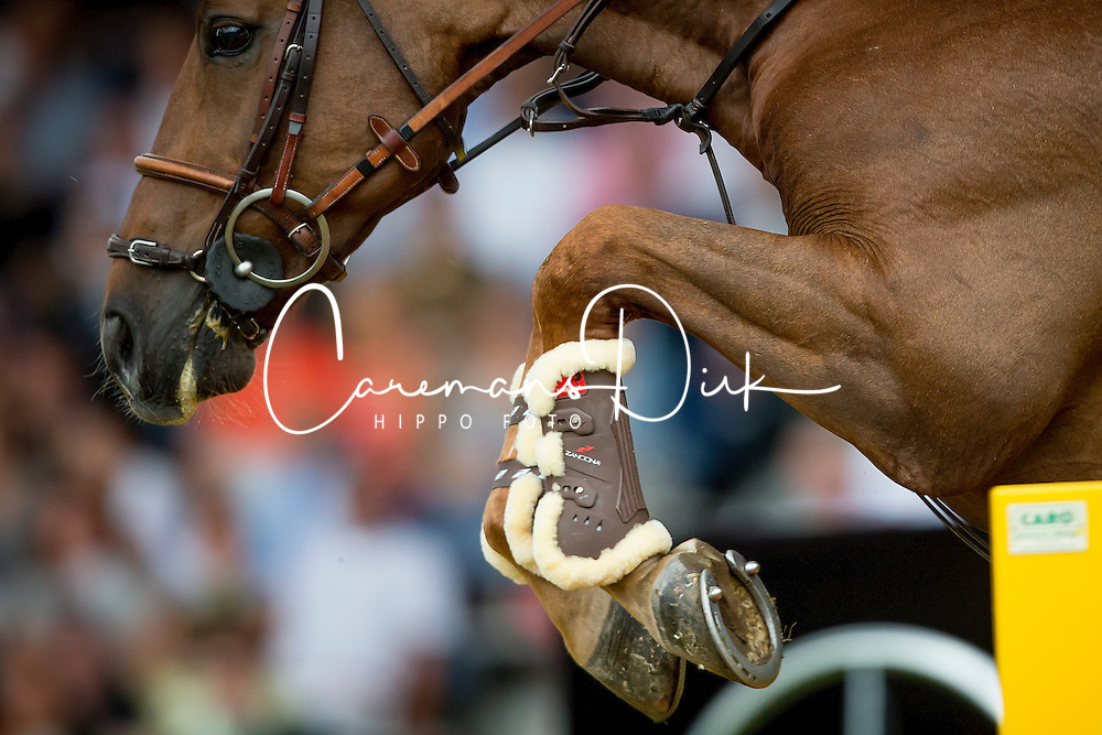 Delestre Simon, (FRA), Ryan Des Hayettes<br /> Individual Final Competition<br /> FEI European Championships - Aachen 2015<br /> &copy; Hippo Foto - Dirk Caremans<br /> 23/08/15