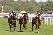 QAYSAR (1) ridden by Pat Dobbs and trained by Richard Hannon winning The P J Towey Construction Ltd Handicap Stakes over 1m (£25,000)   during the fourth and final day of the St Leger Festival at Doncaster Racecourse, Doncaster, United Kingdom on 14 September 2019.